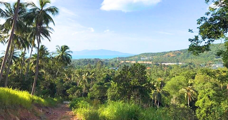 Prime Sea view Land Plots For Sale in Bophut Hills-1