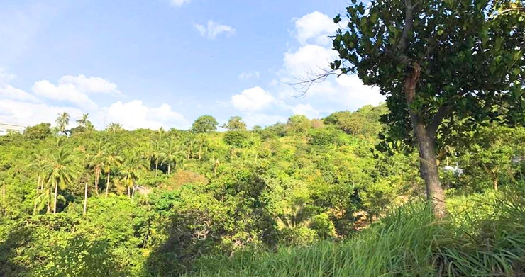 Prime Sea view Land Plots For Sale in Bophut Hills-5