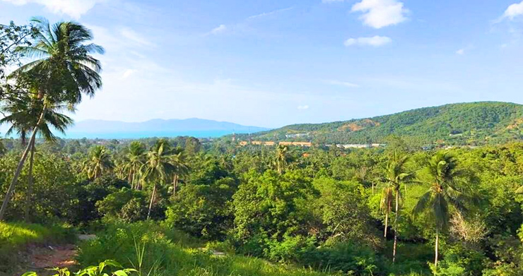 Prime Sea view Land Plots For Sale in Bophut Hills-2