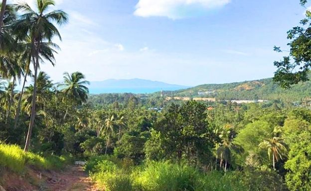 Prime Sea view Land Plots For Sale in Bophut Hills