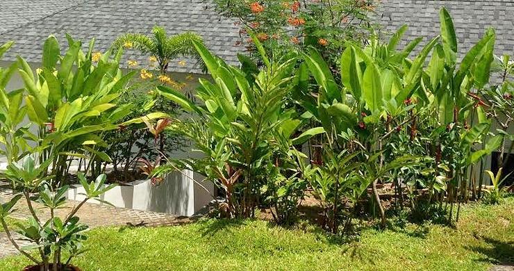 Tropical 3 Bedroom Private Pool Villa in Lamai -17