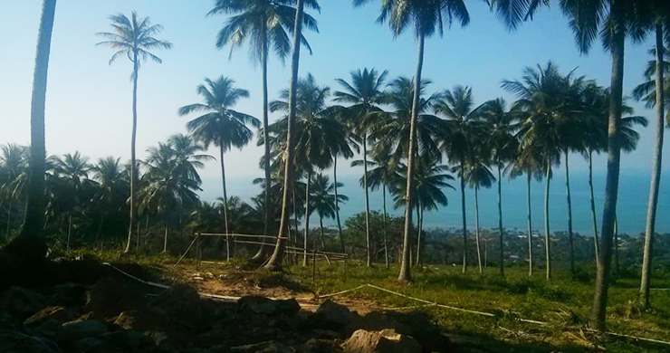 Exclusive Sea View Land For Sale in Bangpor -2