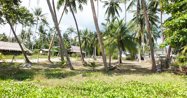 Peaceful Beachfront Land for Sale in Taling Ngam-2