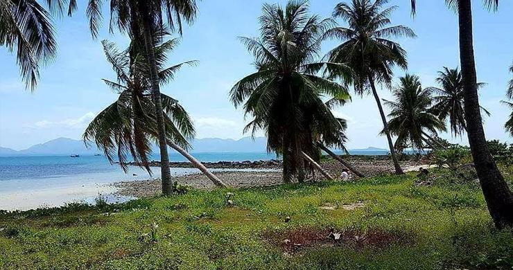 Prime Beachfront Land for Sale in Maenam-6