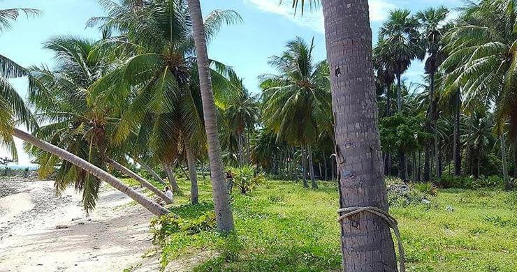 Prime Beachfront Land for Sale in Maenam-7