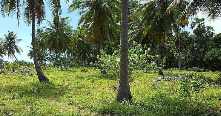 Prime Beachfront Land for Sale in Maenam-9